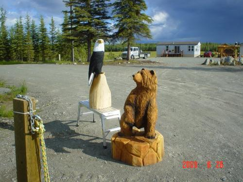 Curious Bear Commissioned Chainsaw Art Carving