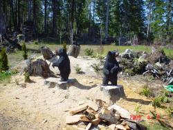 Three Black Stump Bears wod carvings