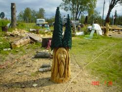 Old man in the trees chainsaw carving