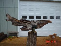 Old growth cedar eagle chainsaw art
