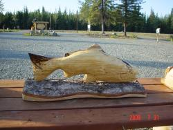 Spalted Salmon chainsaw wood carving